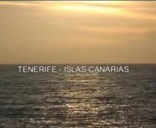 Iberostar Anthelia ***** de Tenerife.